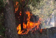 Photo of Un petit incendi al costat del cementiri de Pollença