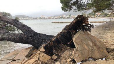 Photo of Ràbia col·lectiva contra Costes per no voler reparar els danys de 'Gloria'