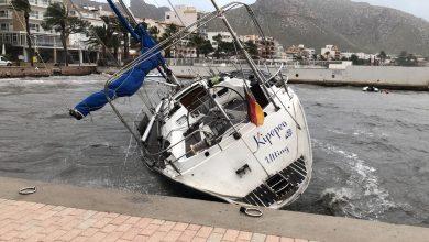 Photo of 'Gloria' causa greus danys materials al Moll