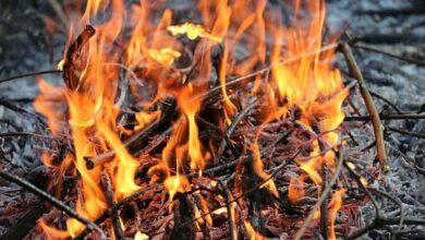 Photo of Recorda la manera adequada de cremar